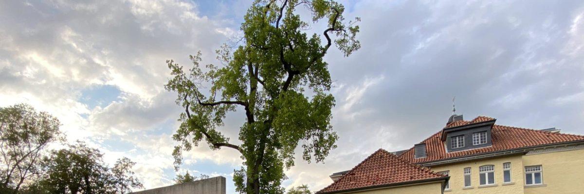 Himmel über Schloss Eulenbroich